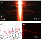 Indefinite plasmonic beam engineering by in-plane holography