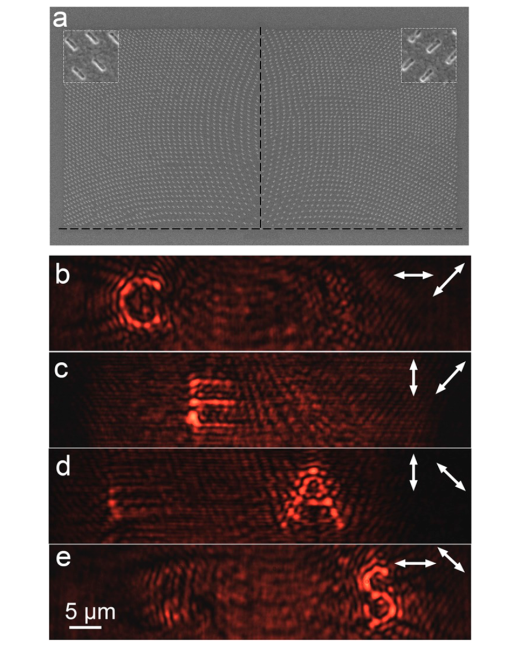Multiplexed Holograms by Surface Plasmon Propagation and Polarized Scattering
