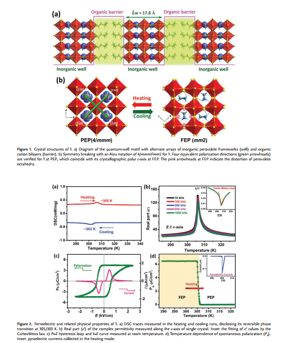 Giant and Broadband Multiphoton Absorption Nonlinearities of a 2D Organometallic Perovskite Ferroelectric